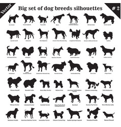 dogs silhouettes 2 vector image