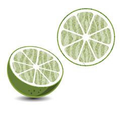 lemon4 vector image