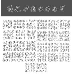 mega set of calligraphy hand written alphabet vector image