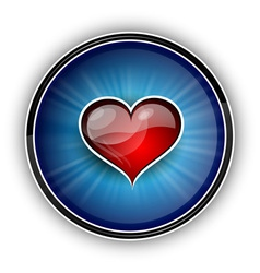red heart on the blue background vector image