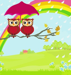 Owls couple under umbrella autumn rainy day vector image