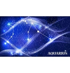 Symbol aquarius zodiac sign vector