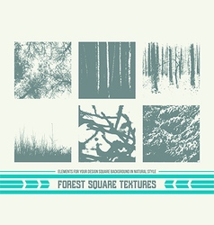 Forest square textures vector image