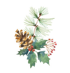 watercolor christmas bouquet with pine cone vector image