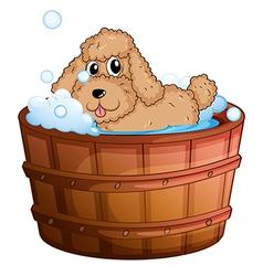 A dog taking a bath vector image