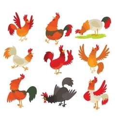 Cute cartoon rooster cock character vector