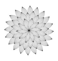 Graphic mandala with abstract petals entangle vector