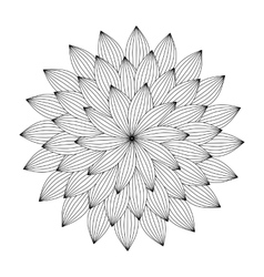 Graphic Mandala with abstract petals Zentangle vector