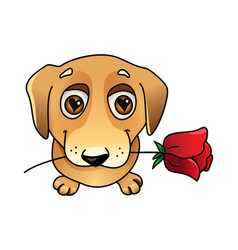 cute dog in love with rose vector image vector image
