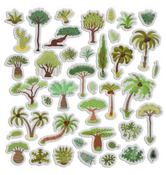 collection of tropical trees stickers palms vector image