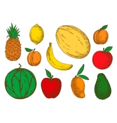 Colorful sketch of vegetarian fruits vector