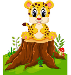 cute baby cheetah sitting on tree stump vector image