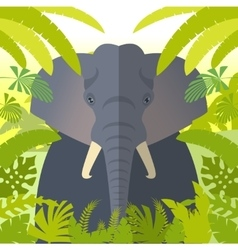 elephant on jungle background vector image
