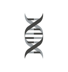 isolated dna helix symbol on white background vector image