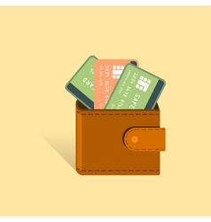 Money Cards in wallet financial vector image
