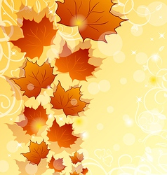 Autumn floral background with maple leaves vector image vector image