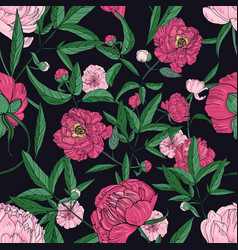 beautiful peonies seamless pattern hand drawn vector image