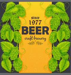 beer poster with a plant hops vector image