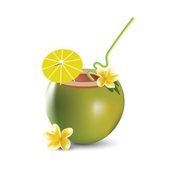 Coconut cocktail isolated on a vector