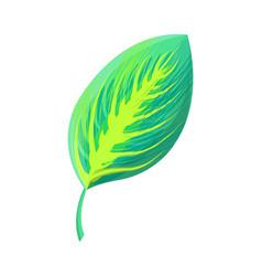 Exotic foliage green leaf vector