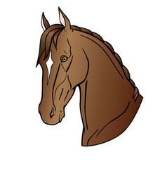 Graceful head a bay horse akhal-teke horse vector