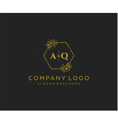 Initial aq letters decorative luxury wedding logo vector