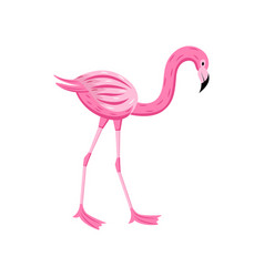 pink flamingo for summer party cards flat cartoon vector image