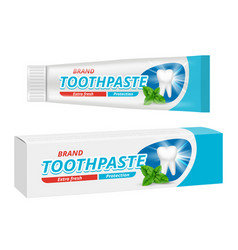 Toothpaste package teeth dental protection box vector