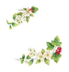 Watercolor wreath jasmine and red vector