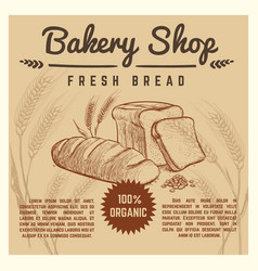 bakery shop retro poster with hand drawn vector image vector image