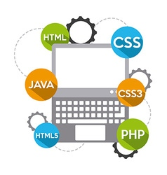 programming software vector image vector image