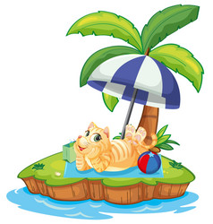 a cat relax on the island vector image