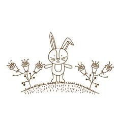 Brown contour graphic of bunny in hill with plants vector