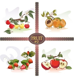 Cherries apricots strawberries and apples vector image