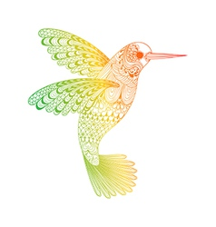 entangle stylized hummingbird hand drawn isolated vector image