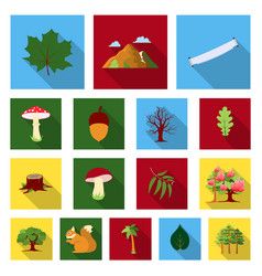 forest and nature flat icons in set collection for vector image