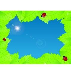 fresh green leaves vector image