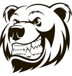 Head a grizzly bear vector