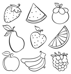 Various fruit element of doodle style vector