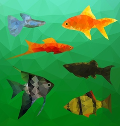 Aquarium Fish in polygon style vector