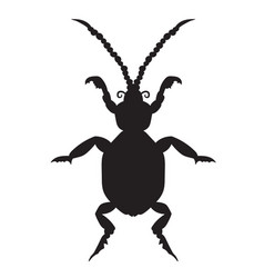 black silhouette of a beetle on a white background vector image