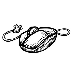 Cartoon image of computer mouse icon vector