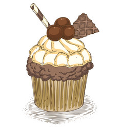 Cupcake with waffles and chocolate balls vector