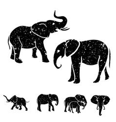 Elephants set vector