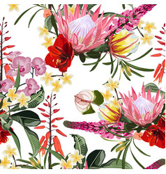 Many kinds exotic tropical flowers vector