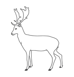 Noble deer vector