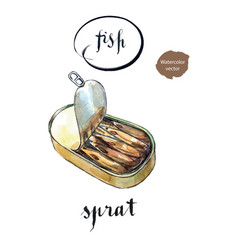 opened preserve of sprats vector image