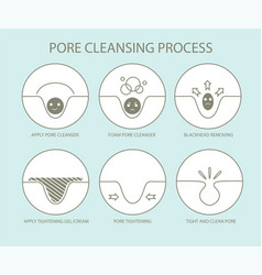 pore cleansing process vector image