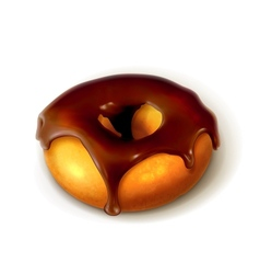 Ring donut in chocolate glaze vector image