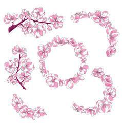 set branches with cherry blossoms collection vector image